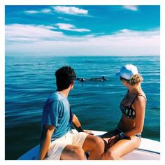 Totally OBSESSED with this picture  || @jaclynmh27 || #beach #ocean #swim #surf #love #dolphins #boat #miami #soflo #florida #csadventure