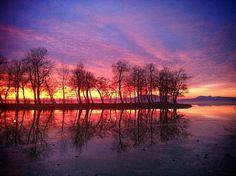 https://flic.kr/p/EoZsQd   #ice #sunset #sundown #sunlight #sky #skyporn #trees #winter #balaton #ig_nature #ignature #naturelovers #ig_myshot #ig_naturelovers #nature_brilliance #instacool #instagood #instalike #instadaily #instafollow #instanature #mirror #watermirror #water #out