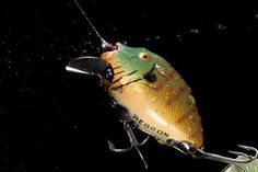 Heddon Fishing Lure Bass Fishing Tips, Fishing Knots, Gone Fishing, Fishing Basics, Fishing Stuff, Fishing Tackle, Vintage Fishing Lures, Types Of Fish, Largemouth Bass