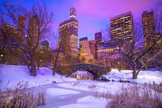 Central Park picture 4 #centralpark #central #park #nyc #newyork  #lifestyle #etatsunis #usa #beautiful #love #beauty #centralparknyc #newyorkcity #thebigapple #manhattan