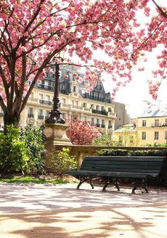 Springtime Park, Paris, France