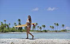 Surf / Skate /Sail / Sun / Summer