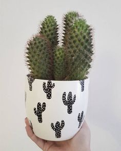 Vases – Home Decor : DIY cactus patterned flower pots with permanent markers -Read More – Cacti And Succulents, Planting Succulents, Planting Flowers, Cacti Garden, Cactus Flower, Flower Pots, Cactus Cactus, Diy Flower, Green Cactus