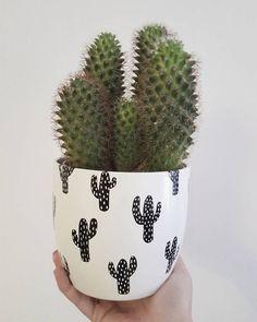 Diseño cactus Black & White  🖤🌵🖤🌵