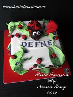 LADYBUG CAKE- DEFNE 2ND BIRTHDAY