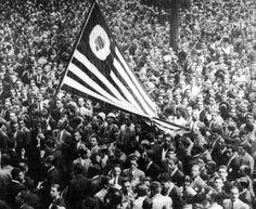 """""""O Brasil não precisa de outro Presidente, ou outras eleições, ou uma intervenção alienígena. O que precisamos é de um transplante de coração, de uma mudança de hábitos cívicos, e acima de tudo precisamos de uma revolução, mas não uma revolução de baionetas e canhões, mas uma revolução da consciência, e o que de fato significa viver em um país sério e funcional."""""""