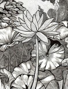 Lotus Etching