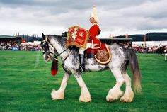 Drum Horse.