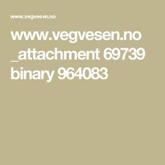 www.vegvesen.no _attachment 69739 binary 964083