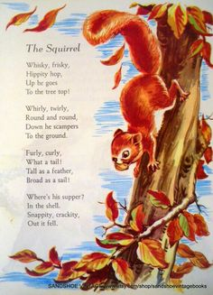 This is a sweet little print featuring the Nursery Rhyme The Squirrel. It shows a seriously cute squirrel scampering down an oak tree. Nursery Rhymes Poems, Poetry For Kids, Kids Poems, Nature Poems For Kids, Pomes, Preschool Songs, Fall Preschool Activities, Finger Plays, Rhymes For Kids