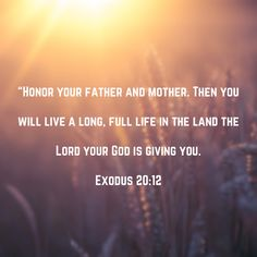 Scriptures, Bible Verses, You Are The Father, God, Life, Dios, Scripture Verses, Praise God, Bible Scripture Quotes