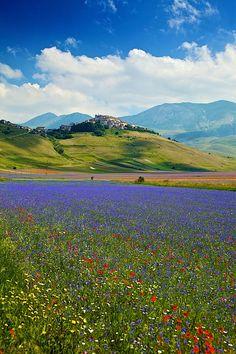 Castelluccio di Norcia, Monti Sibillini National Park, Umbria, Italy