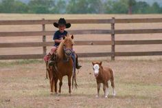 Cowboy in training