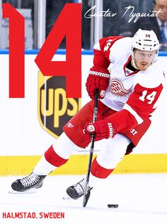 Your 2015-16 Detroit Red Wings #14 - Gustav Nyquist 2014-15 : 82 GP - 27 G - 27 A - 54 PTS