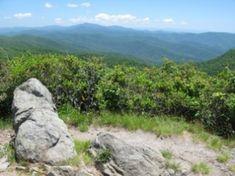 Rocky Top/Thunderhead Mountain via Cades Cove. 13.9 miles roundtrip. 3665 elevation gain