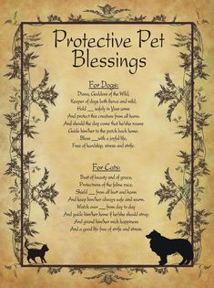 Protective Pet Blessings for Homemade Halloween Spell Book.You can find Spells witchcraft and more on our website.Protective Pet Blessings for Homemade Halloween Spell Book. Wiccan Spell Book, Wiccan Witch, Witch Spell, Witchcraft Spell Books, Healing Spells, Magick Spells, Wicca Witchcraft, Spell For Protection, Wiccan Protection Symbols