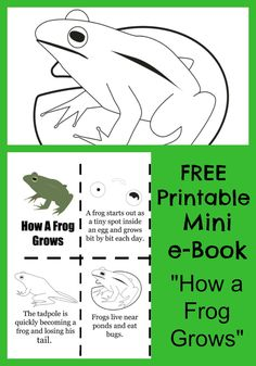 """FREE """"How a Frog Grows"""" mini e-book printable with coloring sheets for kids. Perfect book to print for life cycle science lessons!"""