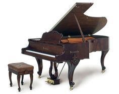 The most gorgeous piano I've ever seen. Someday, it will look beautiful in my library...