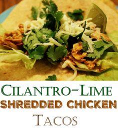 Cilantro Lime Shredded Chicken Taco