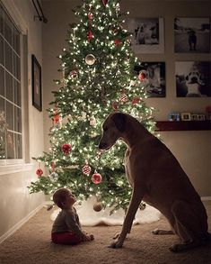 Christmas Cards Ideas for Your Pets Guarantee cuteness overload with a shot of your baby + the pup.Guarantee cuteness overload with a shot of your baby + the pup. Cute Puppies, Cute Dogs, Cute Babies, Big Dogs, I Love Dogs, Giant Dogs, Kids With Dogs, Animal Pictures, Cute Pictures
