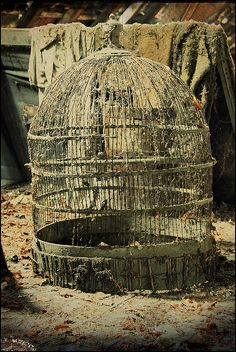 Bird cage by little memorie kisses, via Flickr #urbex #decay #abandoned