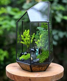 Dimention: 140mm (Length)*125mm (width)*235 mm (Height) N.W=500g This lovely terrarium is made by hand from clear glass, Lead- free solder used to
