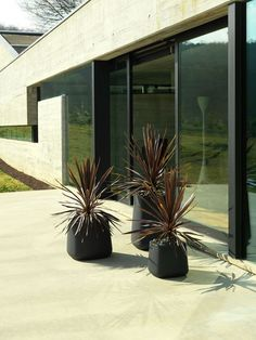 Contemporary modern planters with curved edges online at potstore.co.uk
