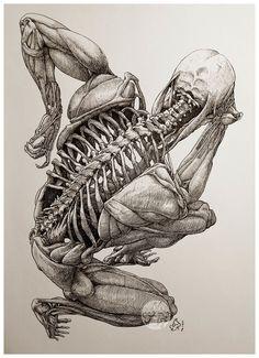 ArtStation - The Thinker from Beyond, Mau Vasconcellos Skeleton Drawings, Skeleton Art, Skeleton Anatomy, Anatomy Sketches, Art Drawings Sketches, Badass Drawings, Medical Illustration, Illustration Art, Human Anatomy Drawing