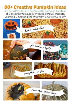 Over 80 #Pumpkin Ideas all in one spot! Plus the winners of the Perfectly Pumpkin Contest are announced!! #PerfectlyPumpkinContest #Fall #Autumn