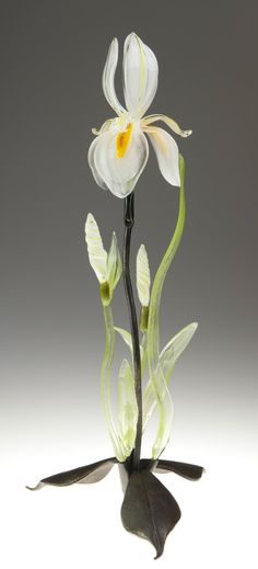 White Iris by Loy Allen. Expertly crafted from lampworked glass, a brilliant white iris unfurls its petals amid a cluster of delicate buds and leaves. This lifelike, free-standing blossom sprouts from a forged steel stem and leaf-shaped base. Just like a live flower, each sculpture is unique and will vary. Minor assembly required.