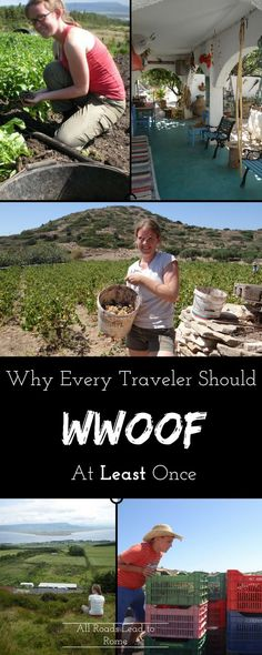 Volunteering on an organic farm is a great way to travel cheaply, get to know locals and have unique experiences on the road. Learn why WWOOFing is so great, and how to get set at a farm on your next trip now!