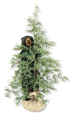 72 Inch Lighted Pine Tree with Tahoe Black Bear