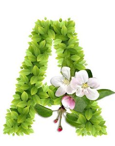 Abecedario con Hojas Verdes y Flores Blancas. Alphabet with Green Leaves and White Flowers. Alphabet Art, Alphabet And Numbers, Letter Art, Childrens Alphabet, Flower Letters, Initial Letters, Lettering Design, Hand Lettering, Writing Styles