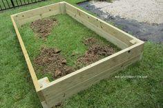 How to Make a Raised Garden Bed   mybigfathappylife.com