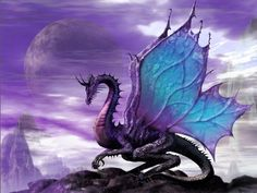 fairy dragon - Fantasy pictures and fantasy images