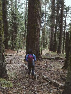 Instagram: alex.garciaxo    Travel to Sequoia, adventure, camp, hike, and explore !