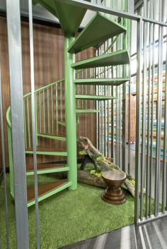 Spiral Staircase In keeping with the urban treehouse theme, the spiral staircase leading houseguests from the ground floor to the second adds a touch of green. Big Brother Hoh, Big Brother Pictures, Memory Wall, New Homes, Backyard, Outdoor Structures, Seasons, Spiral Staircase, Treehouse