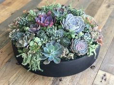"""20"""" diameter modern black low bowl. Arrangement has over 75 succulents and weights 37 lbs!"""