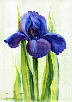 Iris, Blue, Purple, Flowers, Watercolor Original Painting from the Artist #Realism
