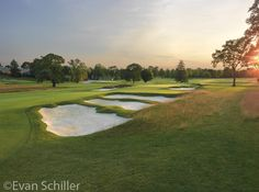 Philly Cricket The reintroduction of the long and it's fantastic features. Cricket, Philadelphia, Golf Courses, Club, World, Green, The World, Cricket Sport, Philadelphia Flyers
