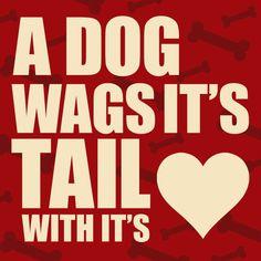 Wag more, bark less.