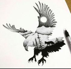 Aquila Pinterest