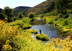 Dolores River, Colorado: Professionally guided fly fishing adventures on the upper and lower Dolores River in southwest Colorado, while staying in Telluride. Fly Fishing Boats, Fly Fishing Tackle, Destin Fishing, Trout Fishing Tips, Bass Fishing, Fishing Photos, Fishing Photography, Fishing Adventure, Fish Ponds