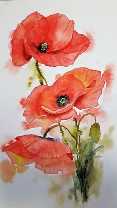 Galeries virtuelles aquarelles et acryliques – Anne Larose Watercolor and acrylic virtual galleries – Anne Larose Watercolor Poppies, Easy Watercolor, Watercolor Cards, Watercolour Paintings, Poppies Painting, Floral Paintings, Watercolors, Arte Floral, Flower Art