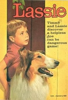 Timmy fell in the well? is the barn on fire? do you KNOW you are a male dog? Old Tv Shows, Movies And Tv Shows, Cinema, Vintage Tv, Tv Guide, Classic Tv, Old Movies, The Good Old Days, Best Tv