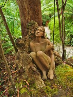 Magic Forest Wood Art Marysville,Australia - Google Search