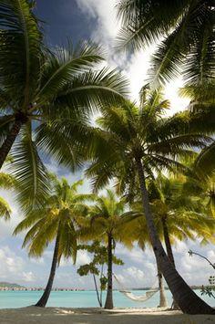 St Regis Bora Bora Resort
