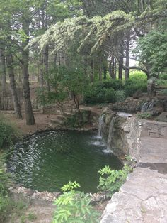Japon Bahçesi - Eskişehir'de Bahçe