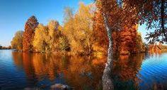 Картинки по запросу фотографии осенней природы