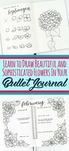 Learn to draw beauti